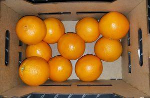 Eine Orangenkiste als Nahrungsmittelverpackung